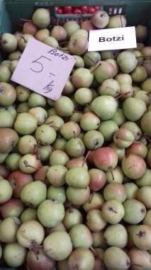 Botzi Pears
